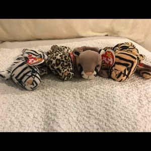 ty Other - Ty Beanie Baby Cats Bundle w/tags